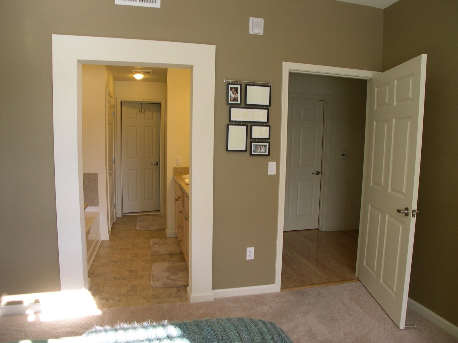 Suggest your Chocolate Brown Wall Paint Color. — thenest