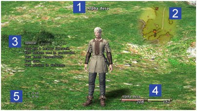 Twelves journey through Eorzea: Final Fantasy XIV Alpha Test Manual