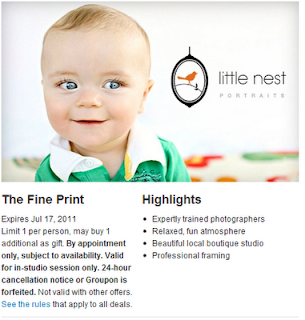 Groupon-Little Nest Portraits的当日交易