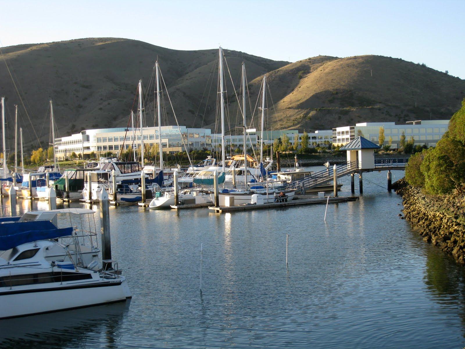 Walking San Francisco Bay: Oyster Pt  to Oyster Cove Marina - Nov