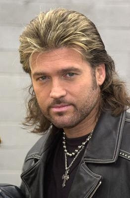 My 411 On Hairstyles Mullet Hairstyles