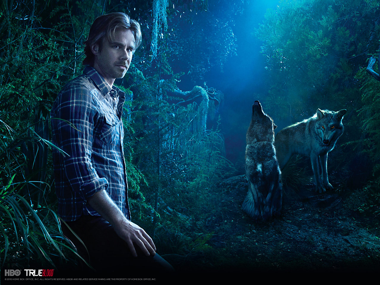 True Blood Wallpaper Hd: High Definition Photo And Wallpapers: True Blood Hd