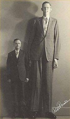 World's tallest man stands at a towering 8ft 11ins