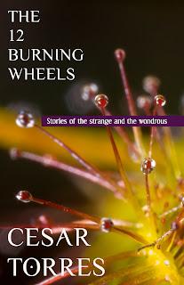 Cesar Torres' 'The Twelve Burning Wheels'