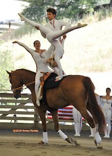 Alltech Fei World Equestrian Games 2006 Weg Vaulting