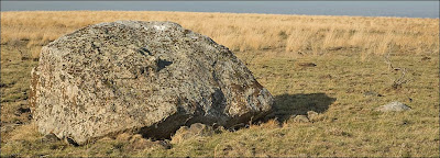 Erratic boulder ice-rafted during the Ice Age Floods.