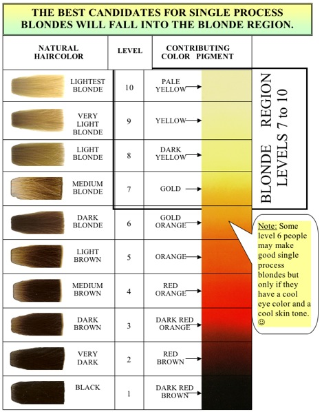 Haircolor Levels Peroxide Developer Lighteners Of Hair ...