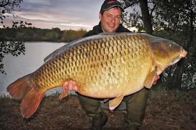 belgisch record karper the big one