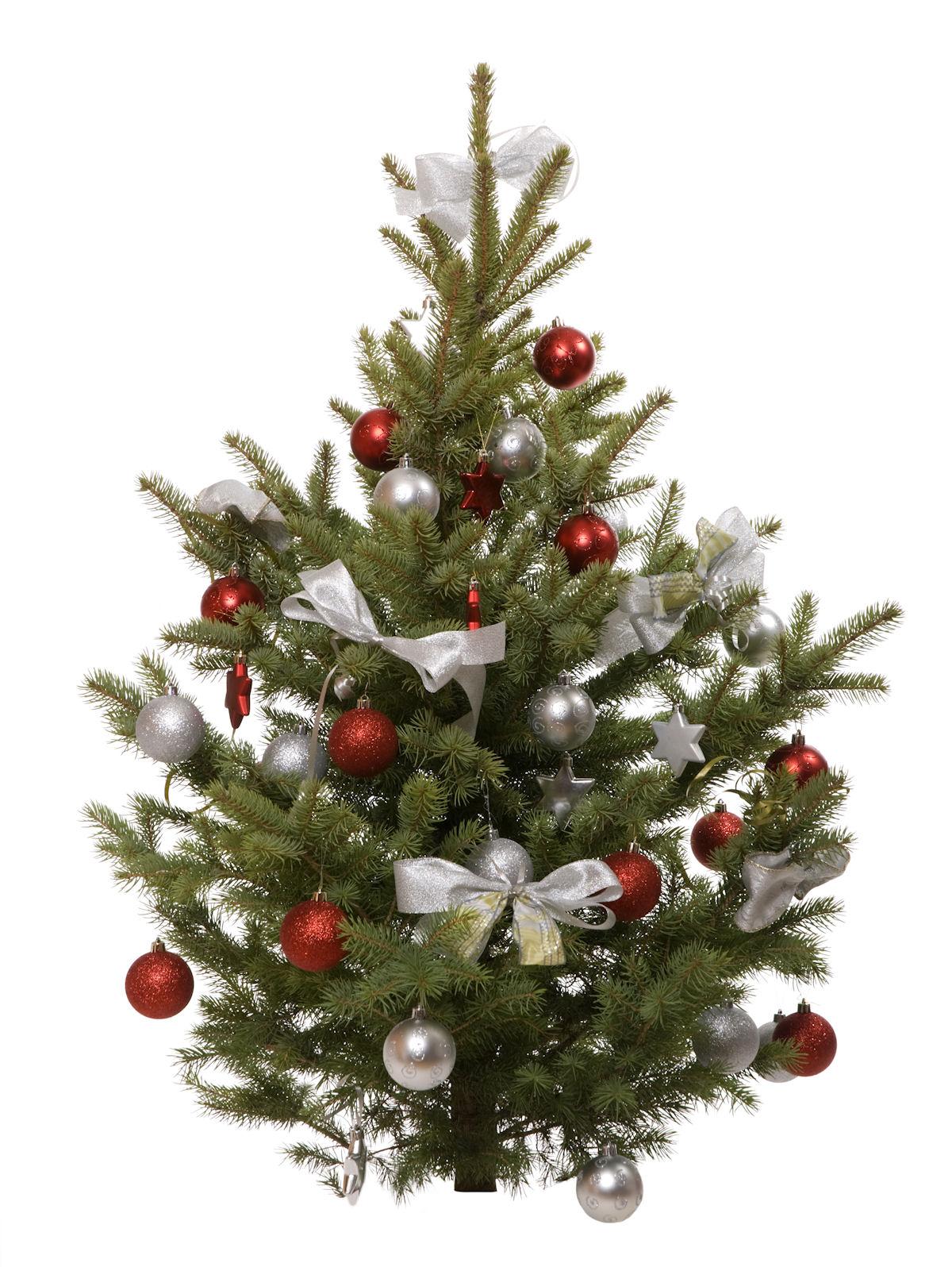 Navidad gif fondo transparente