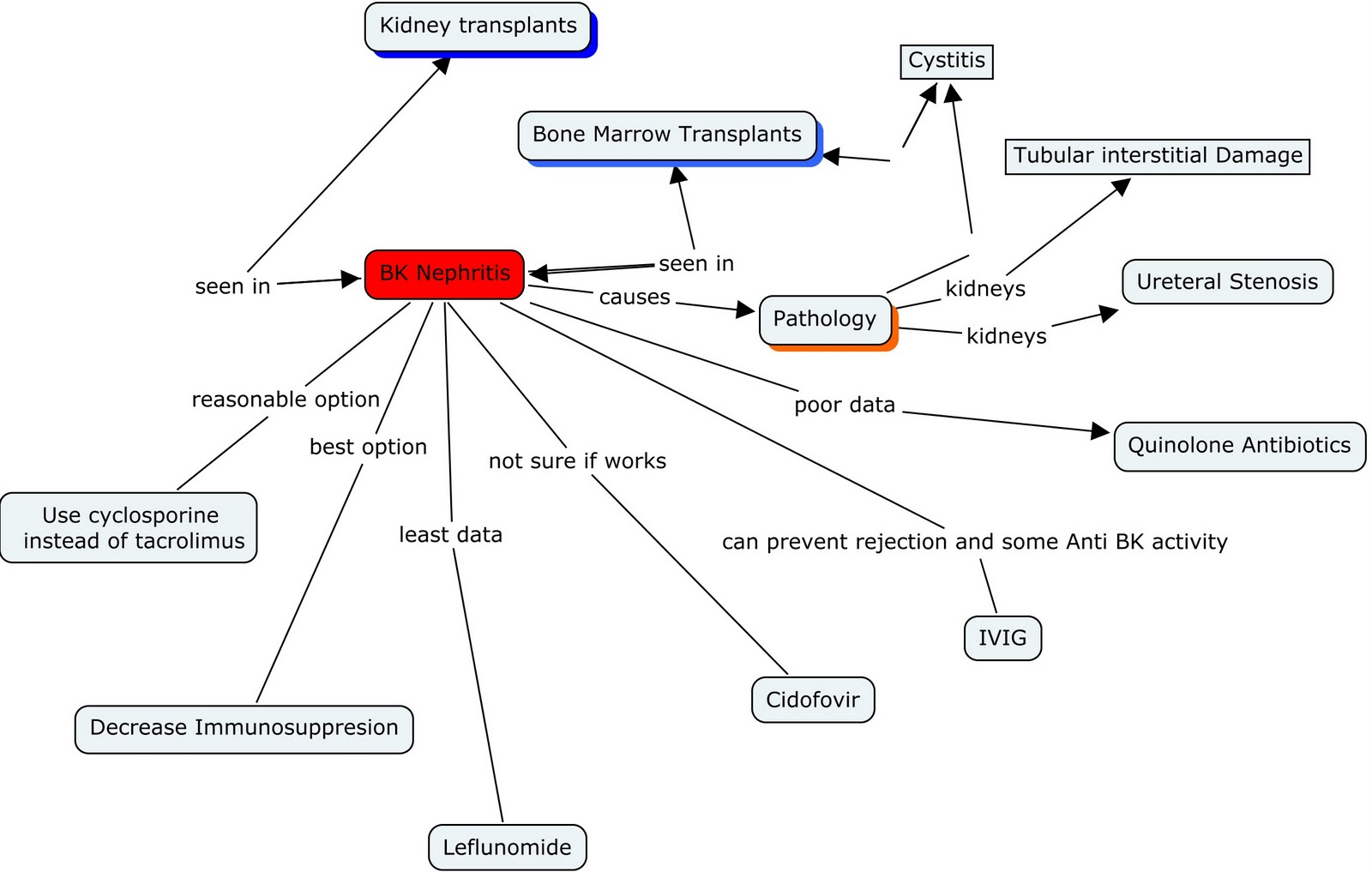 The Complement System Concept Map.Nephron Power Concept Map Of Treatment Of Bk Nephritis