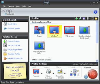 snagit 9.1.2 gratuit