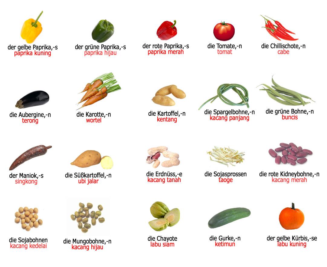 Gambar Peralatan Dapur Dalam Bahasa Arab Desainrumahid Com