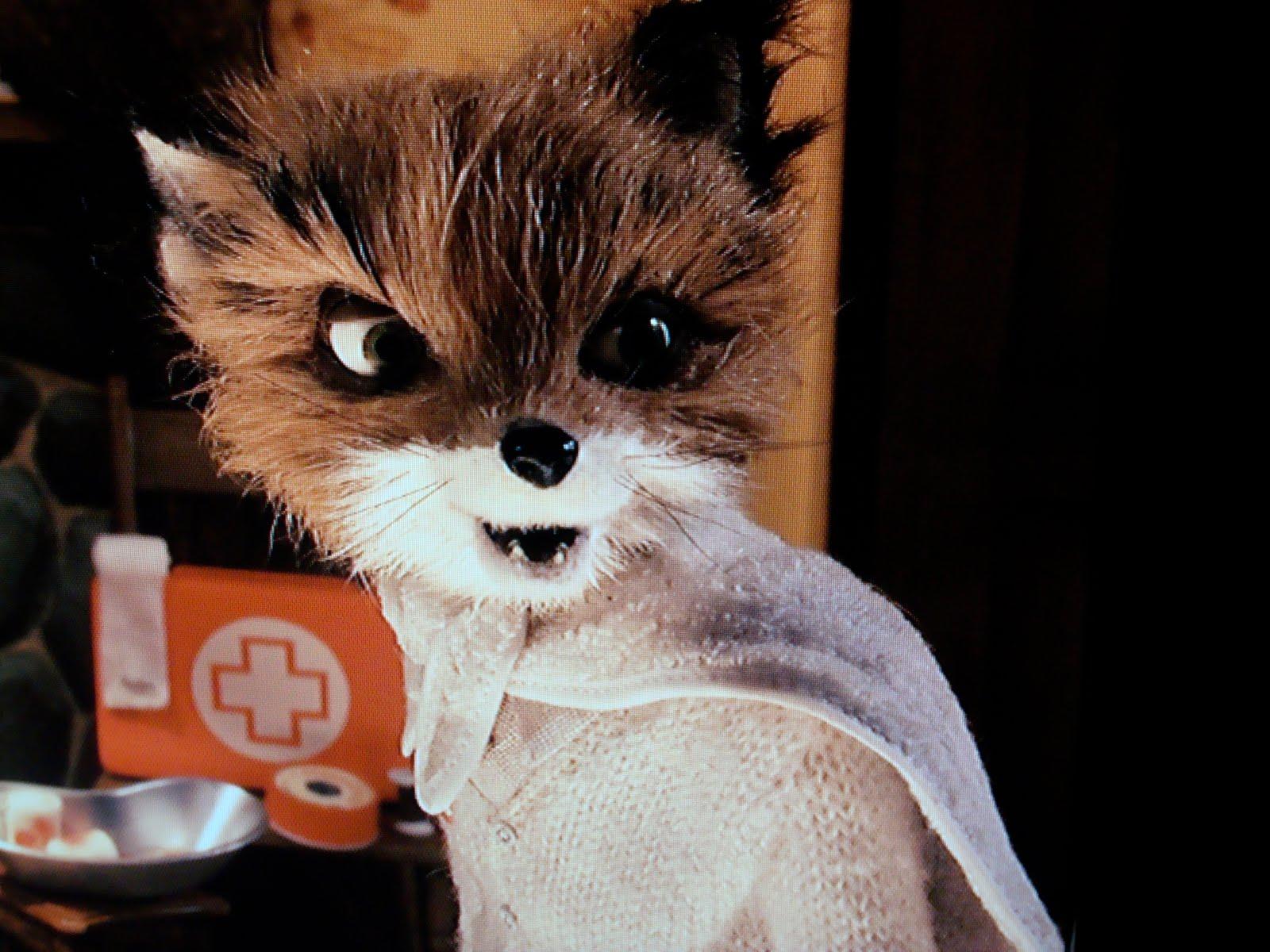 Movie Monday Fantastic Mr Fox Vickie Howell