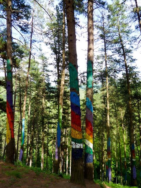 Árboles del bosque pintado de Oma