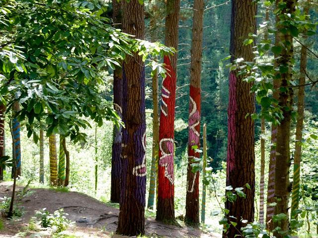 Bosque Pintado en Oma, Bizkaia