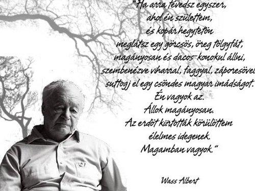 wass albert idézetek szerelem Gondolsz e ram ,A lato ember,Alomtunderhez,Szerelem,Te es a vilag  wass albert idézetek szerelem