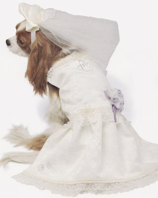 Cathie Filian: Puppy Love! Dogs at Weddings? wedding ...