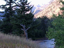 A Mountain Stream at Sunrise in South Central Montana