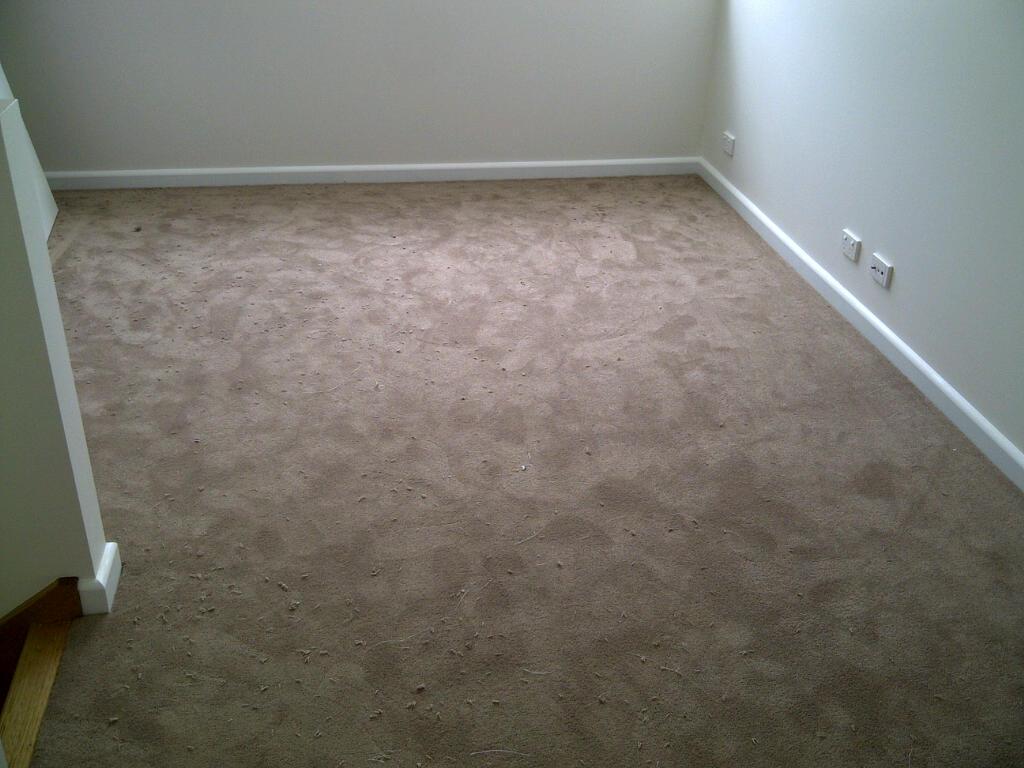 Smartstrand Carpet Melbourne - Carpet Vidalondon