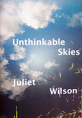 Unthinkable Skies by Juliet Wilson