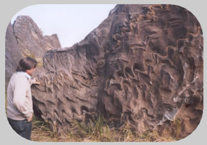 Era Pré-Cambriana (ou Azoica, Arqueozoica e Proteozoica)