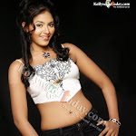 Anjali Hot Photos 1