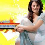 Anjana Suhani Hot Photos