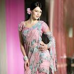 Yana Gupta Hot Look In Saree