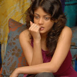 Sneha Ullal Photo Gallery