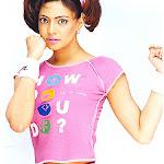 Swetha Bharathwaj Modeliing Photos