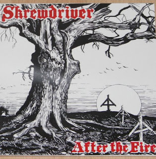 Punk Albums Archive: Skrewdriver - After The Fire
