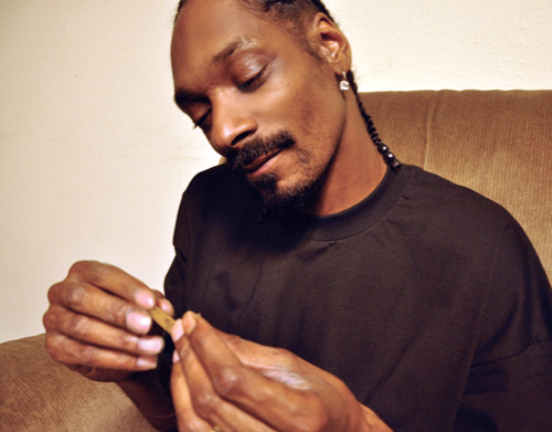 Home Alone Stoned: Snoop Dogg's Guide to Rolling a Blunt