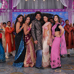 Yuvasamrat Nagarjuna With All South Indian Heriones In King 2