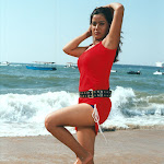Sexy Model And Actress Sivani Exclusive High Quality Unwatermarked Images...