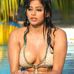 Priyamani The Georgeous Hot And Spicy Babe Hq Unseen Bikini  Collection...
