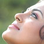 Sexy South Indian Debutant Film Actress Meenakshi Looking Hot And  Beautiful In Blue Half Saree...