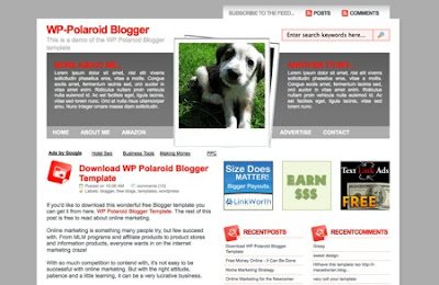 WP Polarid Wordpress tema blogger şablonu