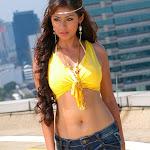 Sadha'S Comeback With 'Puli Vesham'