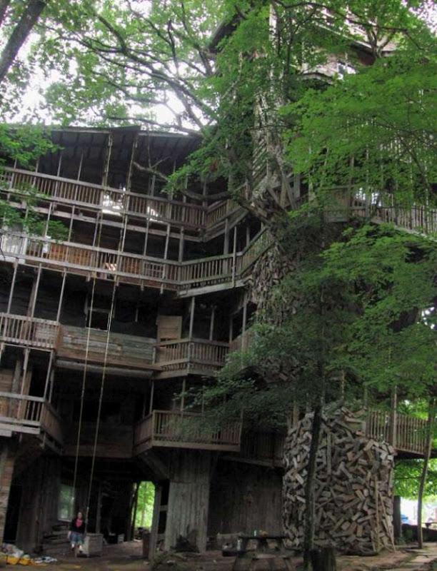 Maior casa em árvore do mundo