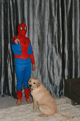 Halloween Spidey & his faithful pup