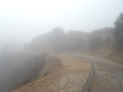 Misty Runyon Canyon after rain Oct 09