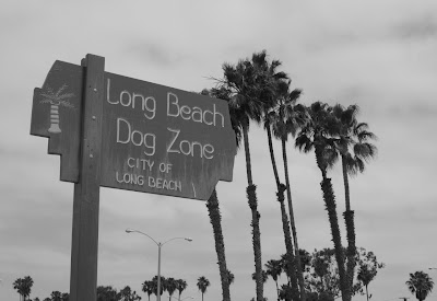 Long Beach Dog Zone sign