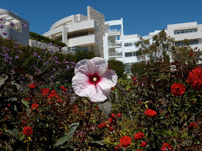 Beautiful flower gardens at the Getty Center