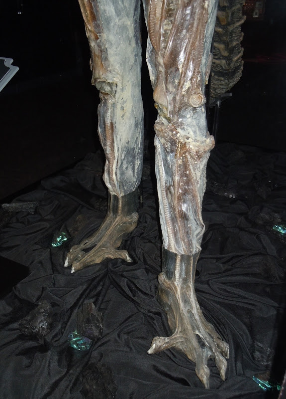 Alien costume legs and feet