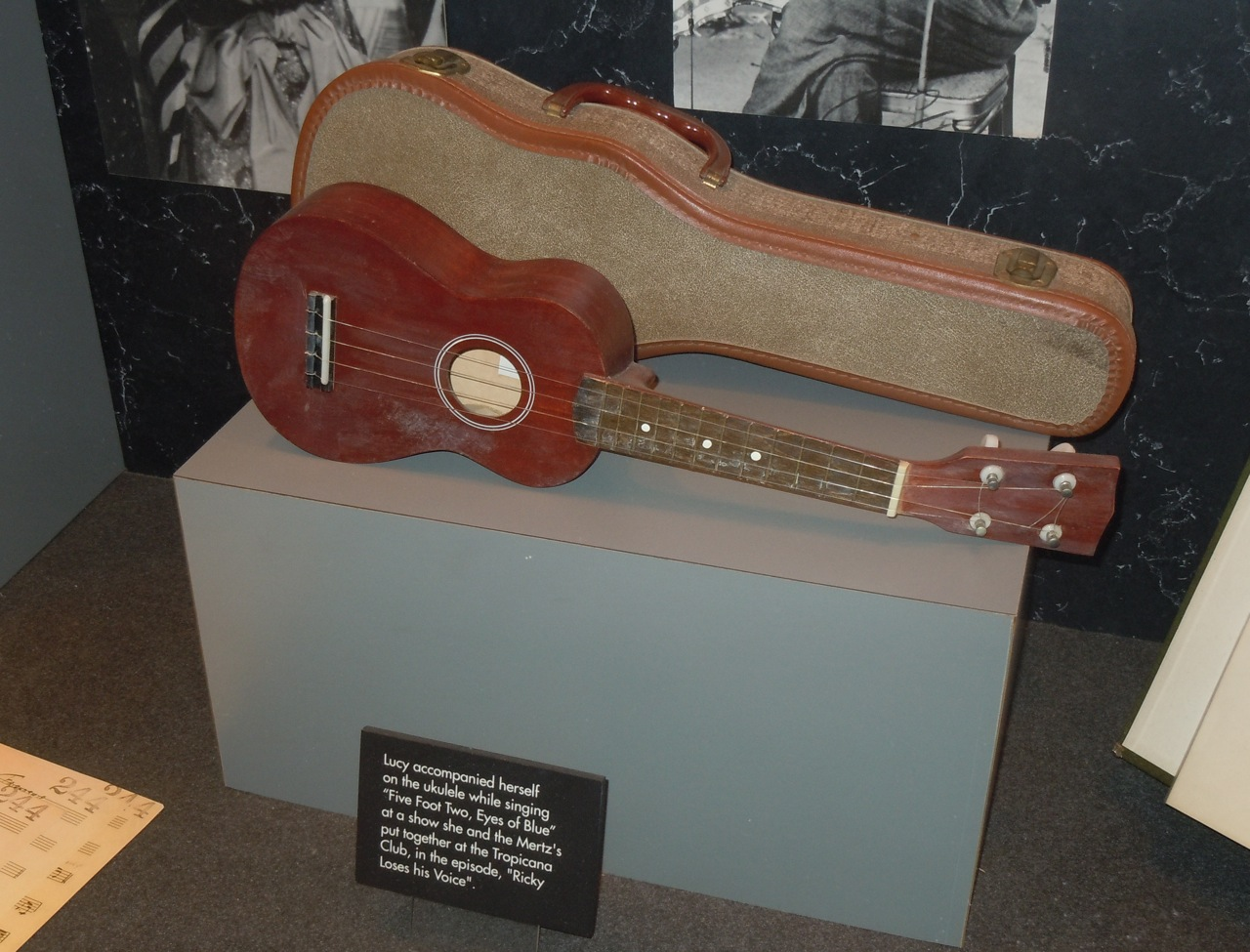 Ukulele Played In I Love Lucy Lucille Ball Display S