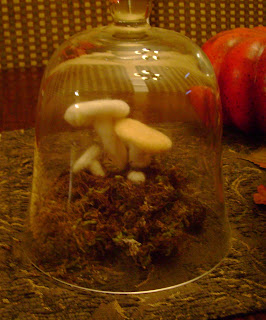 Foam Mushrooms Hobby Craft
