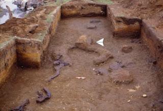 Chili: de nouvelles fouilles à Monte verde confirme la présence de l'homme depuis 14000 ans