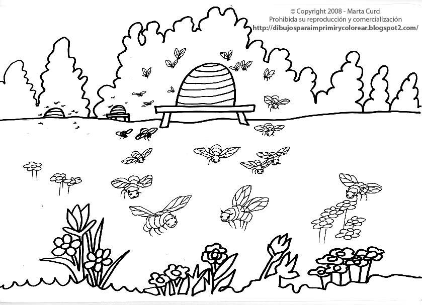 Dibujos Para Colorear No Imprimir: DIBUJOS PARA COLOREAR: Dibujo De Abejitas Para Imprimir Y
