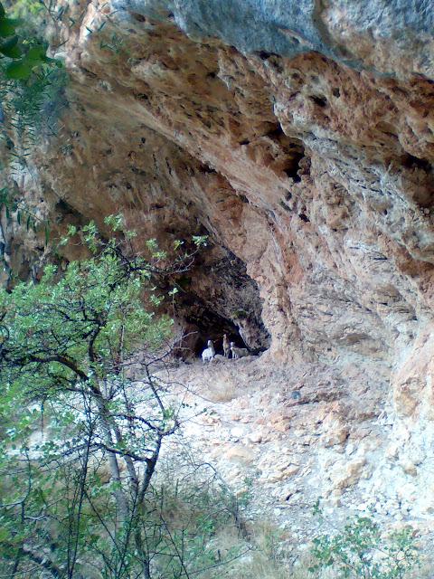 Abric de Meravelles, Marxuquera