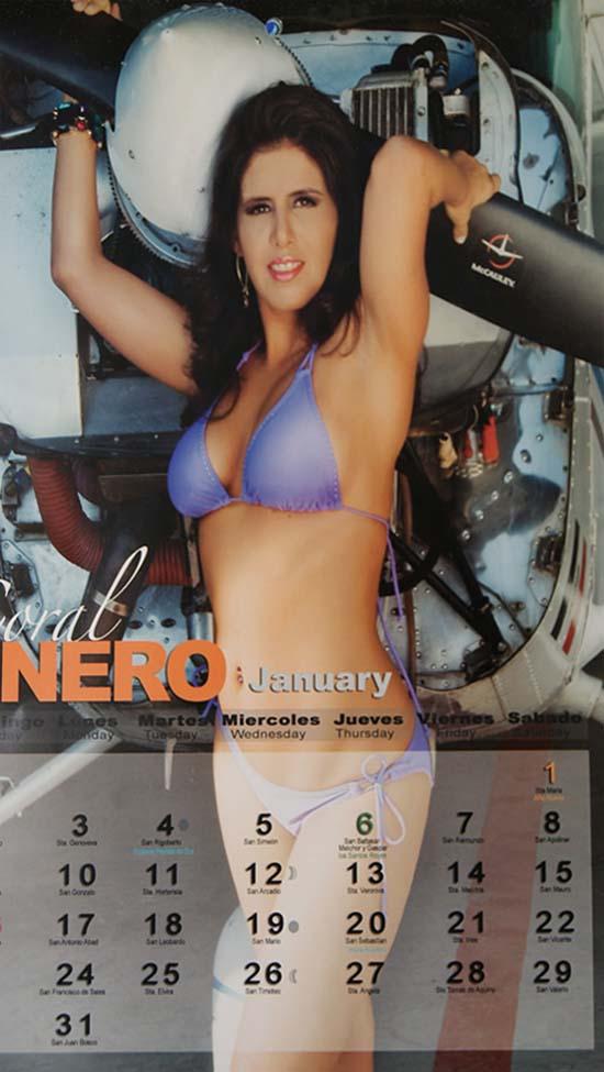 Calendario Play Boy.Los Barbaros Del Norte De Aeromozas A Conejitas Playboy Y